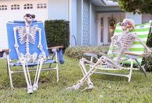 Fall/Halloween Decor / Crafts and decor ideas to prep for the fall and Halloween season!