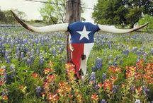 Texas! / by Jimmie Carol Krnavek