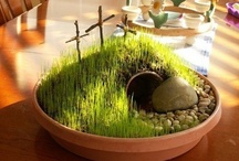 Easter/Spring decor / by Melissa Johnson