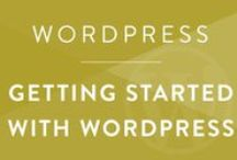WordPress • Getting Started / How to get start your blog or build a business website on WordPress.