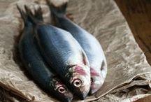fish(фото)