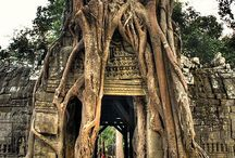 Cambodia / Best photos of Cambodia