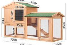 chicken building