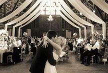 Fairy Tale Wedding / by Megan Silvus