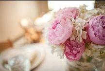 ℳҰ ⓟᶦ¡ᴺⓢ - MY Wedding