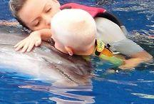 Delphintherapie Türkei / Dolphin Therapy Land Turkey- Antalya-Belek