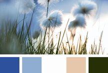 Kaartjes: Kleurencombinaties