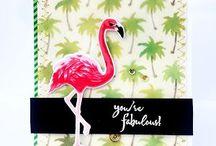 Kaartjes: Flamingo's