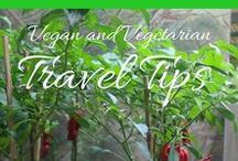 Vegetarian & Vegan Travel Tips / As a vegetarian, finding suitable food to eat whilst travelling can be tough work. Here are some tips on where and how to eat vegetarian or vegan on the road.