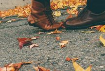 fall is my favorite / by traci beeson