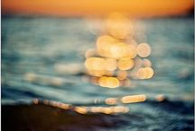 just bokeh <3 / by traci beeson