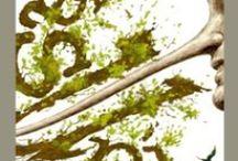 La Batalla por el Yasuní » The Battle to Save Yasuní / No queremos que se explote el petróleo del bloque ITT en el Parque Nacional Yasuní, Ecuador, una de las zonas más biodiversas del planeta. Para saber más: http://otra-educacion.blogspot.com/