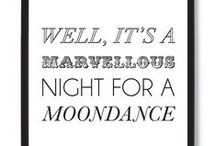 MOONDANCE / by Roni Williams-Cox