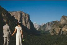 rise of the wedding planner... / by Elizabeth Goodnite