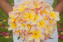 Wedding Ideas / by Caitlyn Gillespie