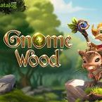 Gnome Wood (Video Slot from Rabcat)