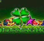 40 Burning Hot (Video Slot from EGT)
