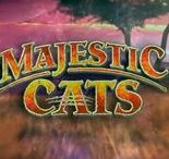 Majestic Cats (Video Slot from High 5 Games)