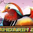 Mandarin Duck (Video Slot from Casino Technology)