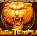 Tiger Temple (Video Slot from Genesis)