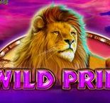 WILD PRIDE (VIDEO SLOT FROM BOOMING GAMES)
