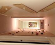 Building a home climbing wall / Ideas for building your own climbing wall at home