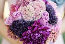 flower shop//