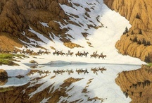 """~•Bev Doolittle•~ / Bev Doolittle is often called a """"camouflage artist"""" because her distinctive use of context, design and pattern help viewers discover meanings which seem hidden only until they become obvious. """"I use camouflage to slow down the storytelling in a painting. But my messages about our wilderness and native peoples are never hidden.""""  / by Lisa Knight"""