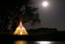 ~•Camping•~ / by Lisa Knight