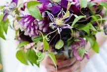 flowers jen might like