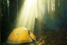 Camping / by Brittany
