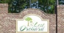 Lost Orchard Subdivision / Lost Orchard is a beautiful Subdivision in Purvis, MS with half acre lots and high quality affordable new homes from Craig Flanagan Construction and Richard Hiatt Construction. We have spec houses and presold packages available.