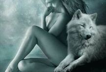 ﴾ wolves with a girl  ﴿