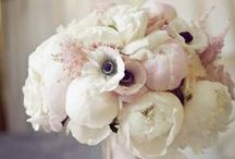 Wedding Ideas / by Shanna Kobayashi