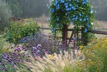 gardens and landscape / by Amy Hendrix
