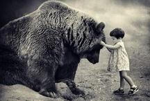 Amazing photos / Слепки мира.