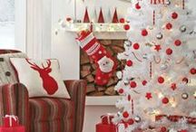 Winter Wonderland / Beautiful examples of how to decorate the home for the holiday season  / by Lindsey Guevara