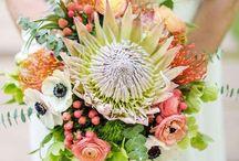 Bouquets / Bridal & Bridal Party Bouquets by SDM