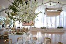 Oakwood Country Club / Located in a Tent at the Oakwood Country Club, this wedding was the epitome of elegance and class. The clear dishes, gold chairs & live trees really brought everything to life.