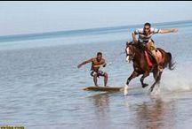 Surf Morocco / Seea Winter 2015 contest