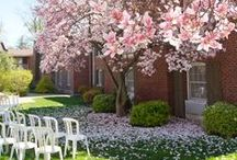 Rose Garden & Miller House Garden / Outdoor ceremony and reception spaces at Pillar and Post in Niagara-on-the-Lake.