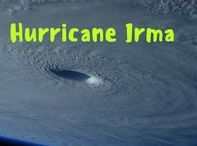 Hurricane Irma South Florida Info / Hurricane Irma resources including contact information for insurance companies, links, apps, local and federal information.  South Florida, Palm Beach County and Boca Raton. #weather #insurance #southflorida