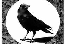 Black Bird.... / All your life, you were only waiting for this moment to be free. The Beatles.......
