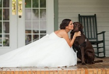 Wedding ideas that I'll never remember for when my kids get married...YEARS from now! / by Gigi Smith Pedersen