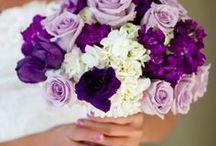 Vintage Wedding 8/2/2014 / Denise & Chuck  / by Denise Aggen - Reiki Practitioner, BSP, Life Coach