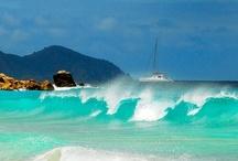 British Virgin Islands ( BVI ) / by Beverly Elmer