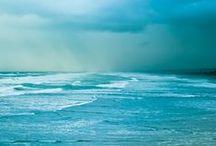 Ocean / by Rakefet Lerer