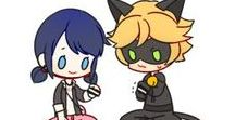 Miraculous laydbug and catnoir