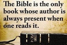 Bible Scripture for Everday / by Barb Lancaster