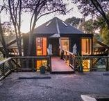 Treehouse with Ocean View / Enjoy your Ocean View among the treetops